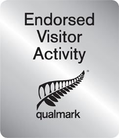 endorsed-visitor-activity